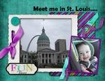 St. Louis - 2009 (jonyce)