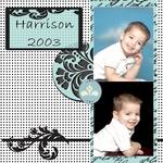 Harrison 2003 (precious1776)