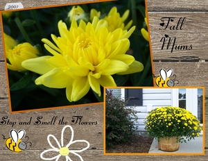 Fall_flowers-p001-medium
