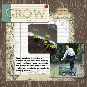 Grow p001 medium