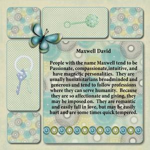 Maxwell p006 medium