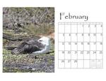Deb's desktop calendar p003 small