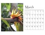Deb's desktop calendar p004 small
