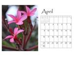 Deb's desktop calendar p005 small
