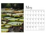 Deb's desktop calendar p006 small