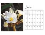 Deb's desktop calendar p007 small