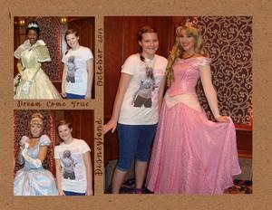 Disney princesses p001 medium