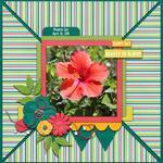 Spring Flowers (craftyjac)