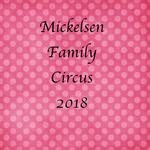 Mickelsen2018 p001 small